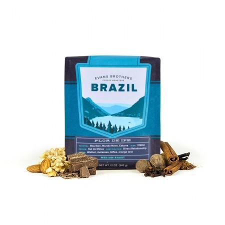 Brazil Flor De Ipe