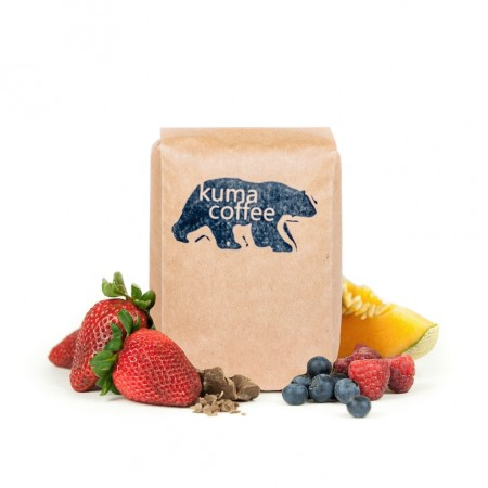Sun Bear Iced Coffee Blend