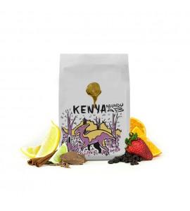Kenya Ndundu AB